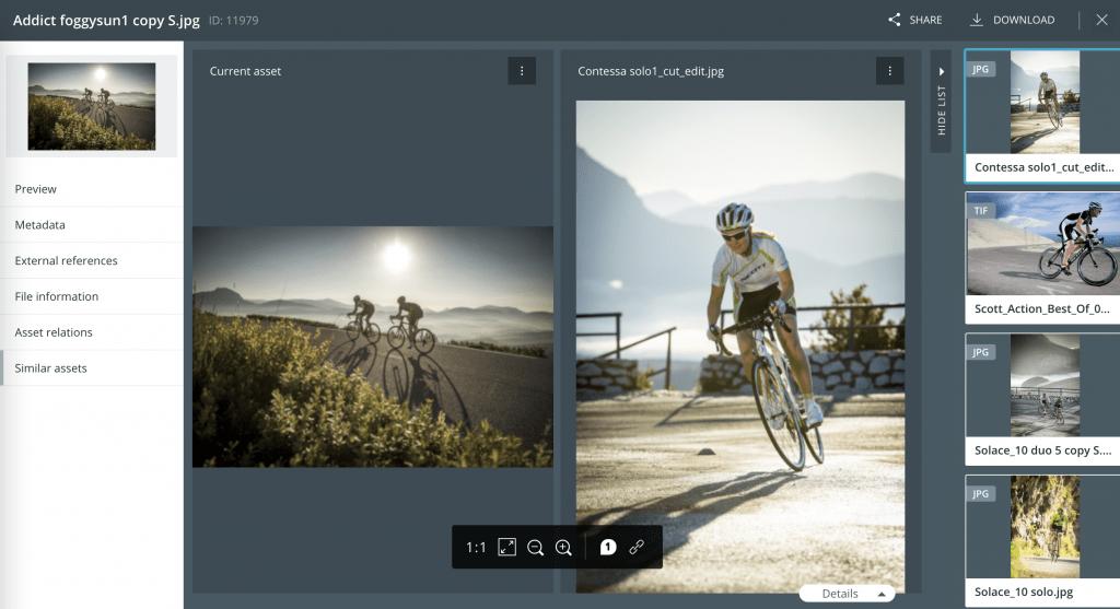 Mit CELUM lassen sich ähnliche Bilder in der Bilddatenbank aufspüren